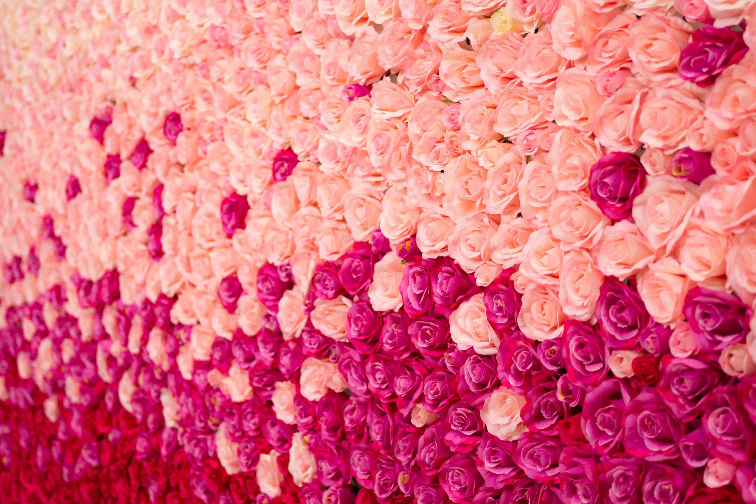 Blumenwand Pink Ombré